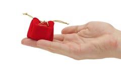 Hand, die ein Geschenk anhält stockfoto