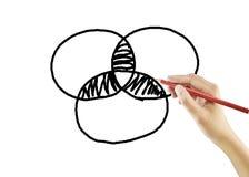Hand, die ein Wachstumsdiagramm zeichnet Stockbilder