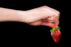 Hand, die eine Erdbeere anhält. Lizenzfreie Stockfotografie