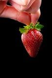 Hand, die eine Erdbeere anhält. Lizenzfreies Stockbild