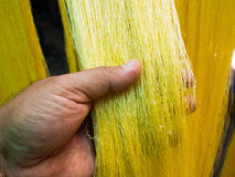 Hand, die eine gelbe rohe Seide auswählt Stockbild