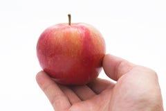 Hand, die einen Apfel auswählt Lizenzfreie Stockfotografie