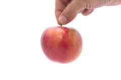 Hand, die einen Apfel auswählt Stockbilder