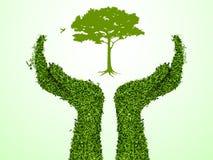 Hand, die einen Baum anhält Stockfotos