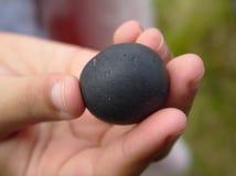 Hand, die einen runden Felsen hält lizenzfreies stockfoto