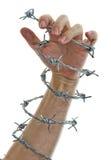 Hand, die einen Stacheldraht anhält