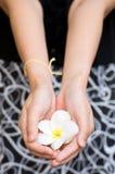 Hand die exotische bloemen geeft royalty-vrije stock fotografie