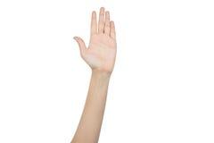 Hand, die für Abstimmung anhebt Stockbild