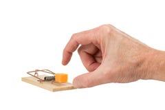 Hand, die für Käse in einer Mausefalle erreicht Lizenzfreie Stockfotografie