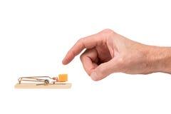 Hand, die für Käse in einer Mausefalle erreicht Stockfotografie