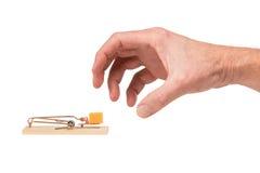 Hand, die für Käse in einer Mausefalle erreicht Lizenzfreie Stockfotos
