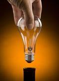 Hand, die Glühlampe anhält lizenzfreies stockfoto