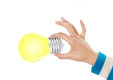 Hand, die Glühlampe anhält Stockfoto