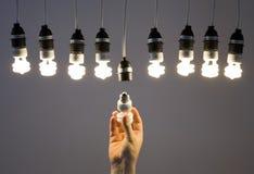 Hand, die Glühlampe ersetzt Lizenzfreies Stockbild