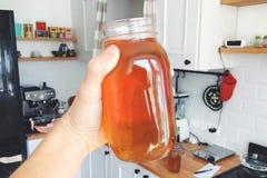 Hand, die Glas von selbst gemachtem organischem Kombucha an der Haus-Küche hält Gesundes Hippie-Getränk Lizenzfreies Stockfoto