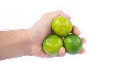 Hand die groene kalk houden Royalty-vrije Stock Afbeelding