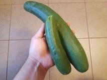 Hand die groene komkommers over tegelvloer houden Stock Foto