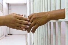 Hand, die Hand hält. Stockbild