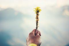 Hand die het gele Landschap van bloemenbergen op achtergrond houden Stock Afbeeldingen
