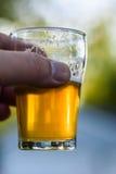 Hand die het glas van de de vluchtsteekproef van het ambachtbier in zonlicht buiten steunen stock afbeeldingen