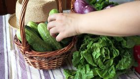 Hand die komkommers nemen stock videobeelden