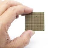 Hand, die Mikrochipcomputer auf weißem Hintergrund hält Stockfotografie