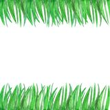 Hand, die Muster des grünen Grases des Aquarells ertrinkt lizenzfreie abbildung
