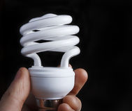 Hand, die niedrige Energie-Glühlampe hält Stockbild