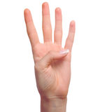 Hand, die Nr. vier zeigt Stockbilder