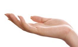 Hand die op een witte achtergrond wordt geïsoleerde. Royalty-vrije Stock Foto