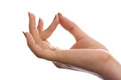 Hand die op een witte achtergrond wordt geïsoleerdl Royalty-vrije Stock Foto