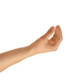 Hand die op een witte achtergrond wordt geïsoleerds Stock Afbeelding