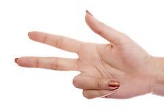 Hand die op een witte achtergrond wordt geïsoleerdt. 3. Royalty-vrije Stock Foto