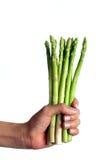 Hand, die organischen Spargel anhält Stockbilder