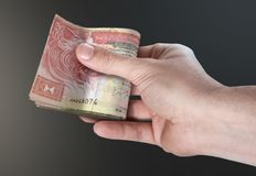 Hand, die Pack des Bargeldes führt Stockbilder