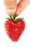 Hand, die reife Erdbeere anhält Stockbilder