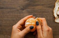 Hand, die reifer süßer Tangerine abzieht Auf einem hölzernen Hintergrund Mit Kopienraum Beschneidungspfad eingeschlossen Stockbild