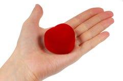 Hand die rood hart houdt Royalty-vrije Stock Afbeeldingen
