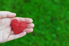 Hand die rood hart op groen houden stock afbeelding