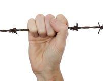 Hand, die rostigen Stacheldraht zusammenpreßt Lizenzfreies Stockfoto
