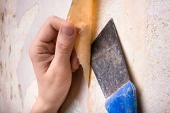 Hand, die Tapete von der Wand löscht Stockbilder