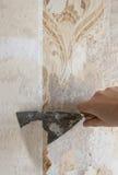 Hand, die Tapete von der Wand löscht Stockfoto