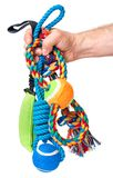 Hand with dog toy. Hand holding Dog toy - pet accessories for games, isolated on white background with copy space Royalty Free Stock Image