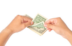 Hand with dollars on white background Royalty Free Stock Photography