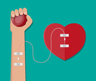 Hand of donor with heart Stock Image