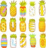 Hand dragen ananasuppsättning Royaltyfria Bilder