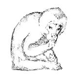 Hand dragen apa Djur bild för svart vektor exponeringsbärbar datorlampa skissar stil Royaltyfri Foto