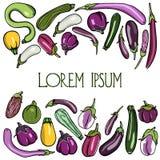 Hand dragen aubergine och zucchini royaltyfri illustrationer
