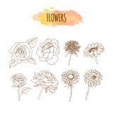Hand dragen blommauppsättning Abstrakt blom- bakgrund vektor illustrationer
