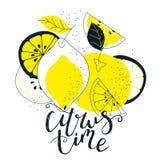 Hand dragen citrus illustration med bokstäver Ny naturlig fruktbakgrund Vektorbaner, paster, packedesign royaltyfri illustrationer